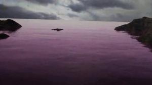 oceani rosa (1)